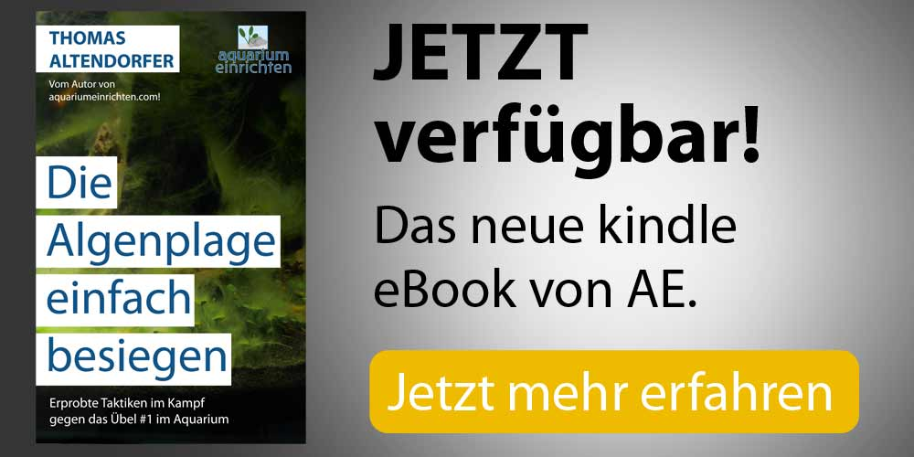 AE eBook Algen